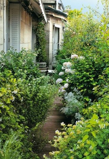 Le jardin s invite en ville deco 39 cot - Pierre alexandre risser ...
